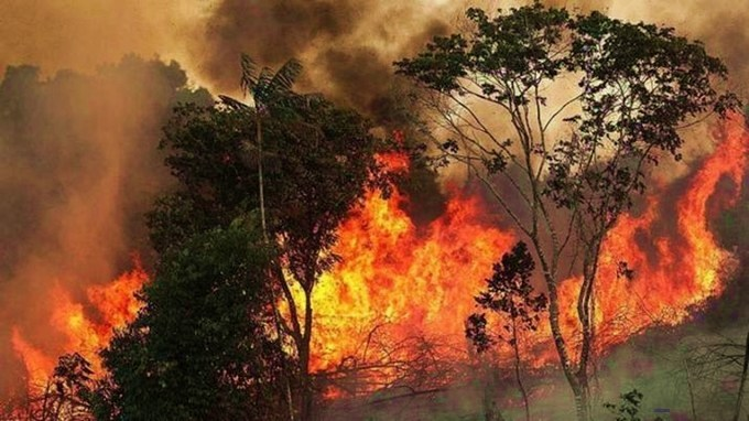 Video: incendios forestales de la Amazonia y Bolivia