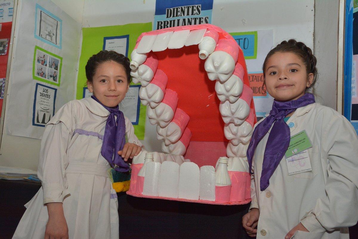 Las mejores fotos de la Feria de Ciencias de la Región Educativa I
