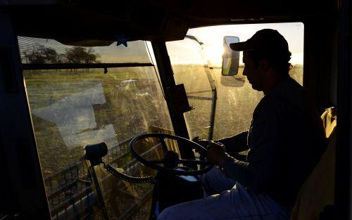 El retorno del kirchnerismo ahoga al principal exportador de harina de soja
