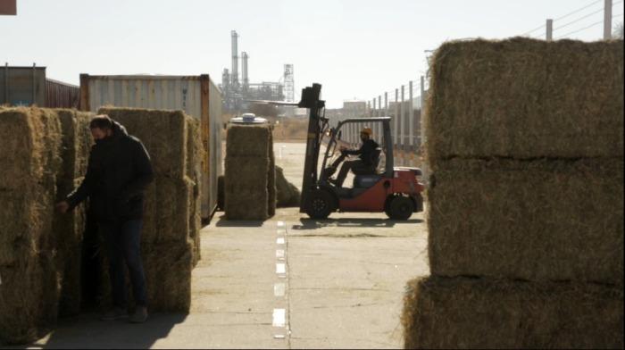 Llegó a Qatarla primera carga de alfalfa enviada por el Gobierno de San Luis