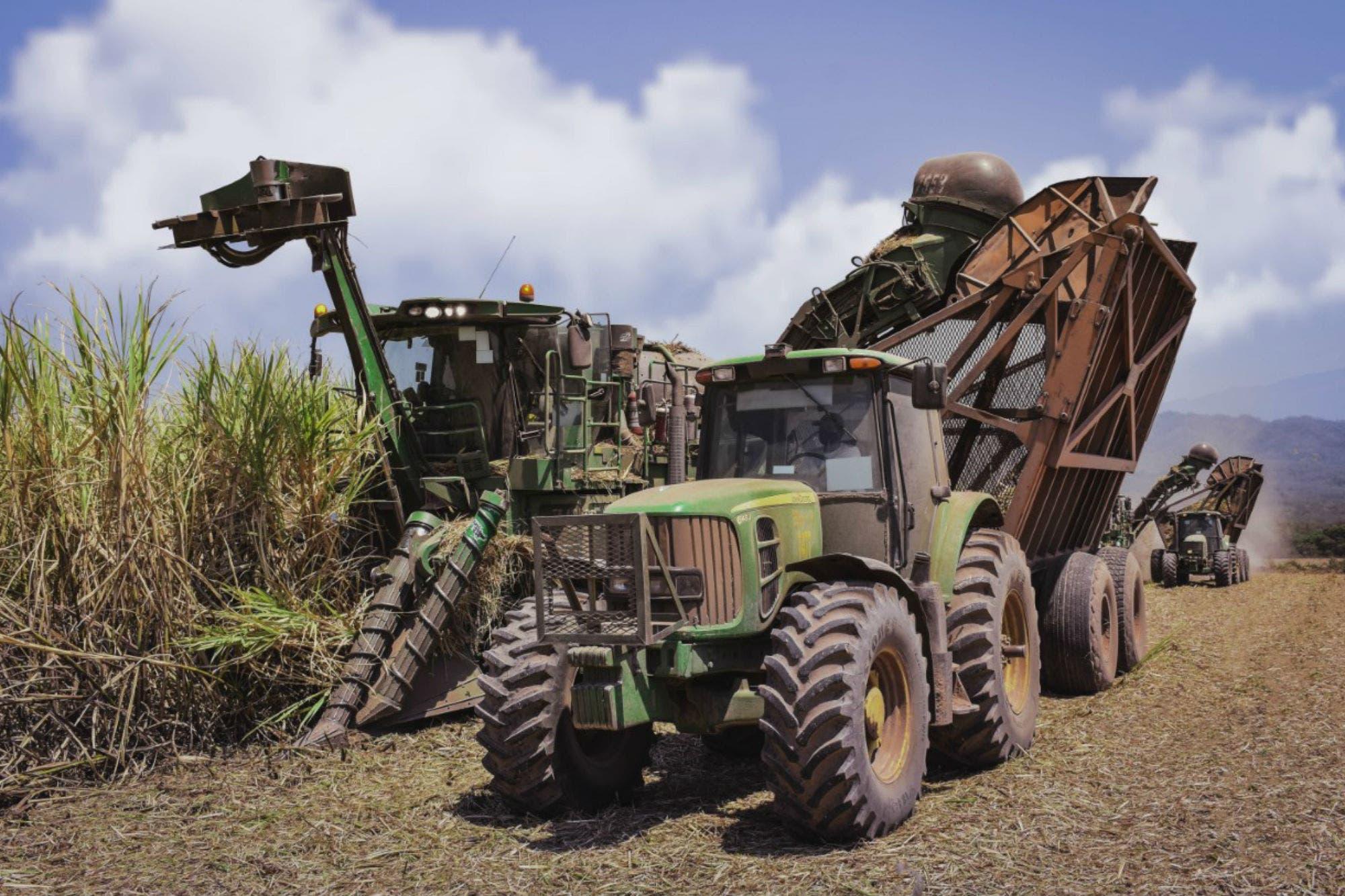 Energía renovable: una empresa azucarera invertirá US$10 millones