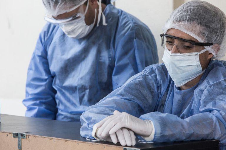 coronavirus-en-brasil-hoy:-cuantos-casos-se-registran-al-21-de-junio